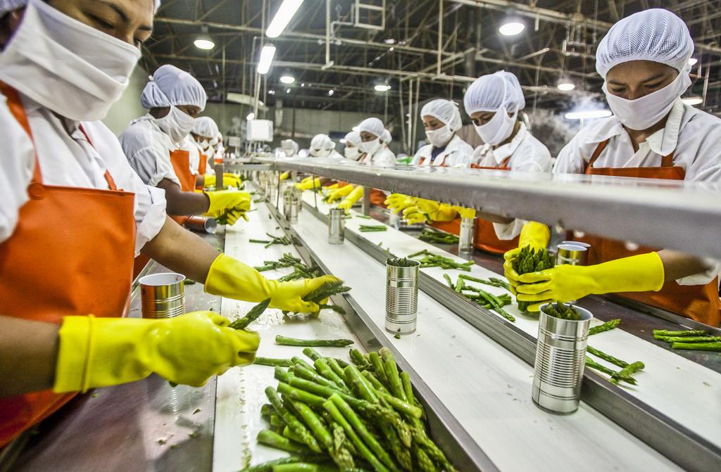 System ERP dla przemysłu w produkcji żywności
